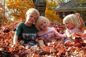 family-fall-photo-658663-m